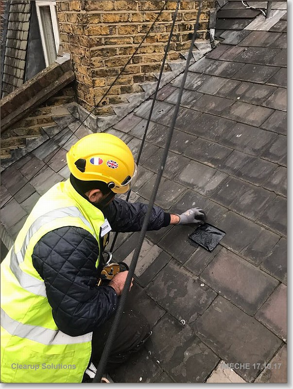 Abseil Property Services